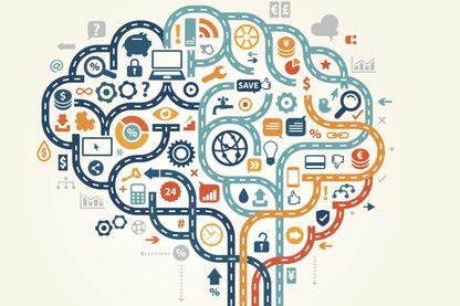 Les zones du cerveau