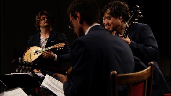 Le Quatuor à Plectres de France