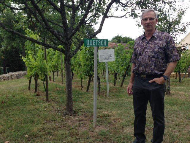 Guy THomas, ex vigneron mais passionné de nature, écologie et de culture.