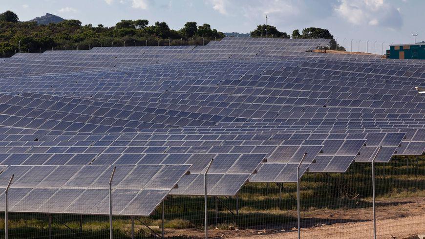 La ferme photovoltaïque va s'étaler sur 15 hectares.