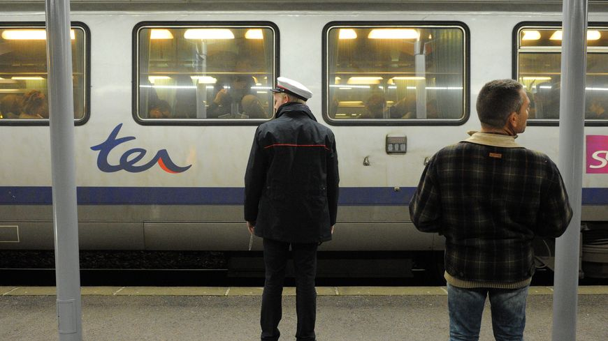 Arrivée du train TER de la ligne Lyon/Besançon en gare de Lons-le-Saunier (Jura).