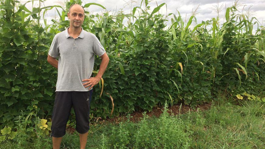 Christophe Gaudry s'est lancé dans la permaculture en 2013. Une technique qui cherche à reproduire l'écosystème, tel qu'il existe dans la nature.