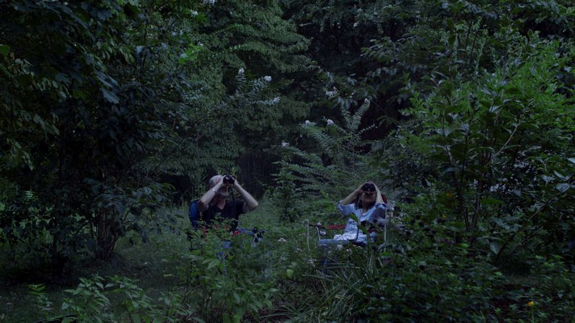 Image tirée du film Diana