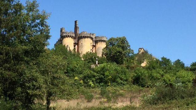 Le château Le Paluel à Saint Vincent Le Paluel