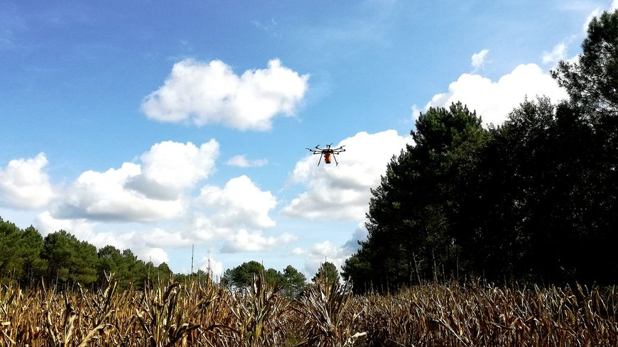 Le drone semeur