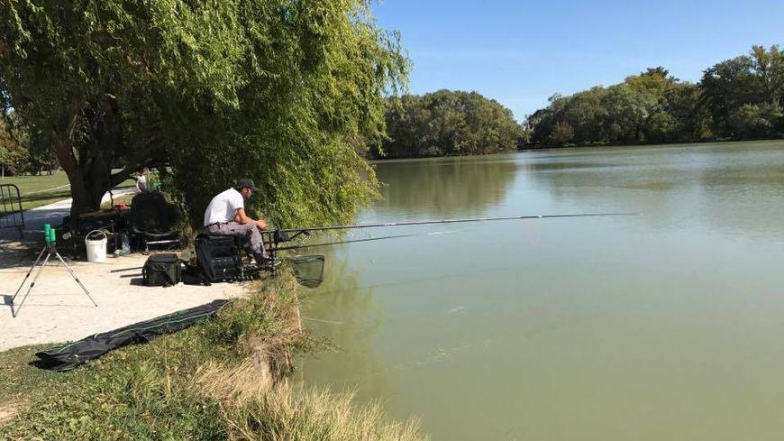 La pêche de compétition à Plaisance-Du-Touch