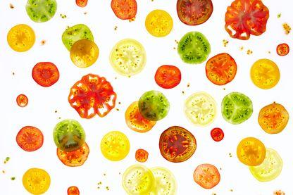 """La tomate - ou """"or rouge""""…"""
