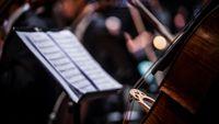 Des oeuvres de jeunesse de Mendelssohn, Haydn et Suk