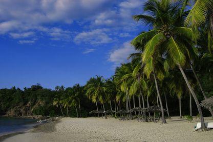 Aux Caraïbes, les îles Caimans