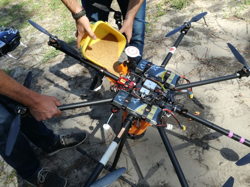 Des petites graines de trèfles versées dans une trémie fixée sous le drone