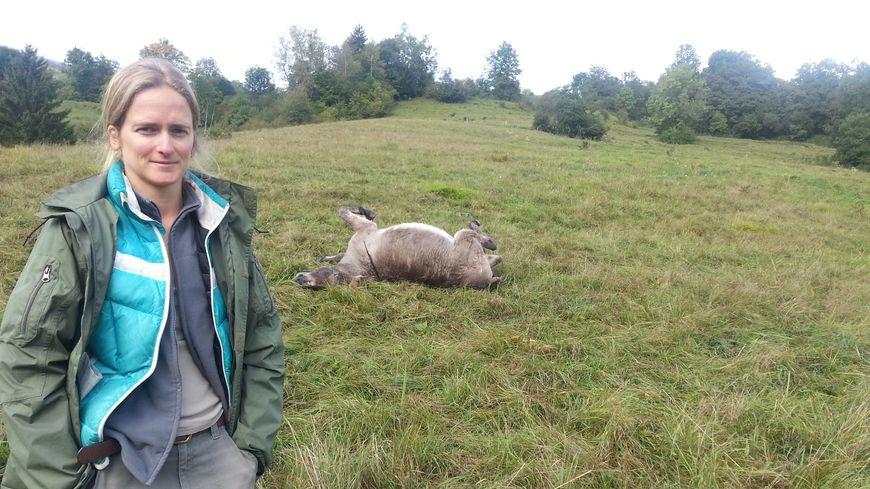 Sandrine a découvert ses ânes morts dans le champ