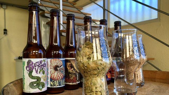 La gamme de bière ZooBrew
