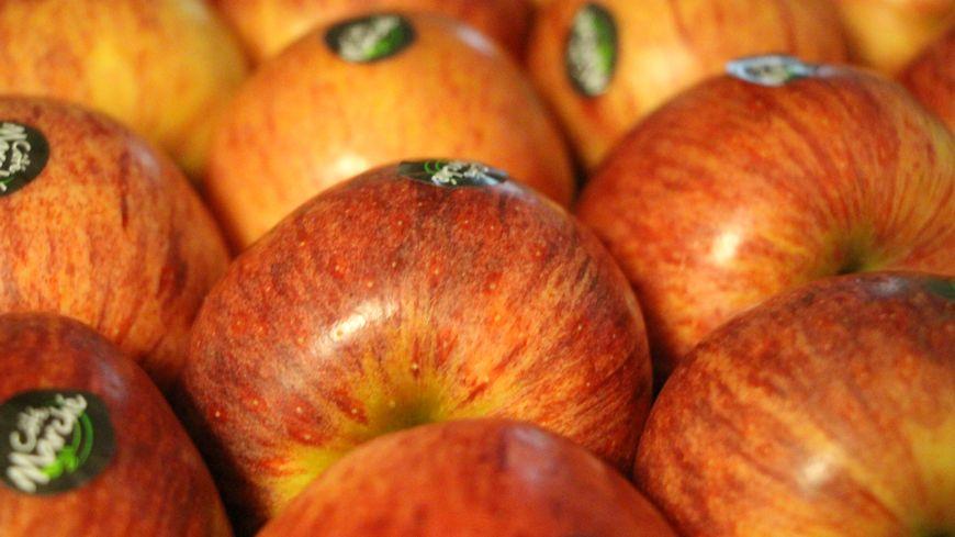 Pommes prêtes à partir en grande surface