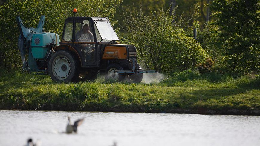 Un épandage de pesticides en bordure de rivière.