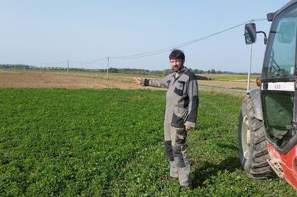 Se passer de glyphosate, c'est beaucoup de boulot, mais c'est aussi rentable. Quentin De La Chapelle a diversifié ses cultures pour lutter contre les mauvaises herbes sans recourir au glyphosate.