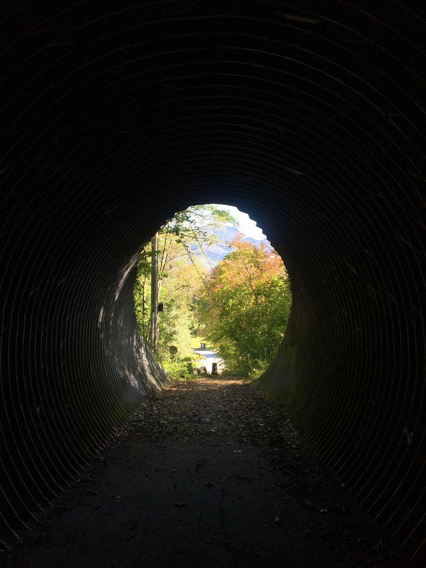 """""""Le tunnel de Chihiro"""", à Saint-Dié-des-Vosges"""