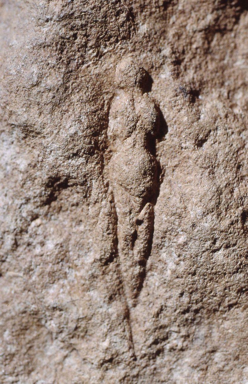 Vénus (abri Pataud, Les Eyziesde- Tayac-Sireuil, Dordogne), Paléolithique supérieur, moulage, 15 × 20 × 9 cm, Paris, Muséum national d'histoire naturelle, musée de l'Homme
