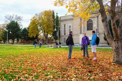 Etudiants sur un campus