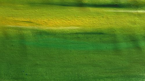 Des goûts et des couleurs avec Michel Pastoureau (4/5) : Le vert