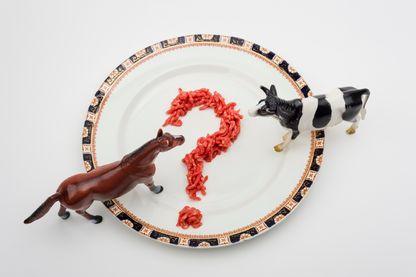 Encore carnivores demain ?