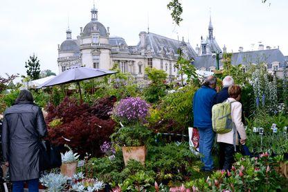 Vue d'illustration de la Journée des plantes de Chantilly en 2015
