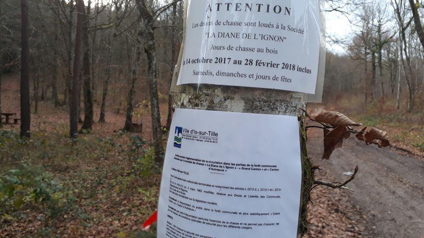 Les affiches à l'entrée de la forêt d'Is-sur-Tille rappellent l'interdiction faite aux promeneurs et autres randonneurs les dimanches de chasse.