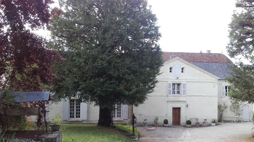 Le presbytère de Loches au coeur de la Cité royale est mis aux enchères sur le site webencheresimmo.com