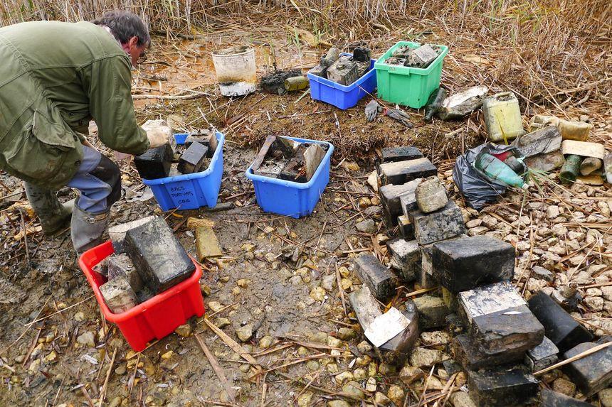 Des dizaine de veilles piles ont été ramassé près des roselières dans la baie de Portout