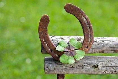 Toucher du bois, trouver un trèfle à quatre feuille, le fer à cheval, autant de superstitions pour s'attirer la chance