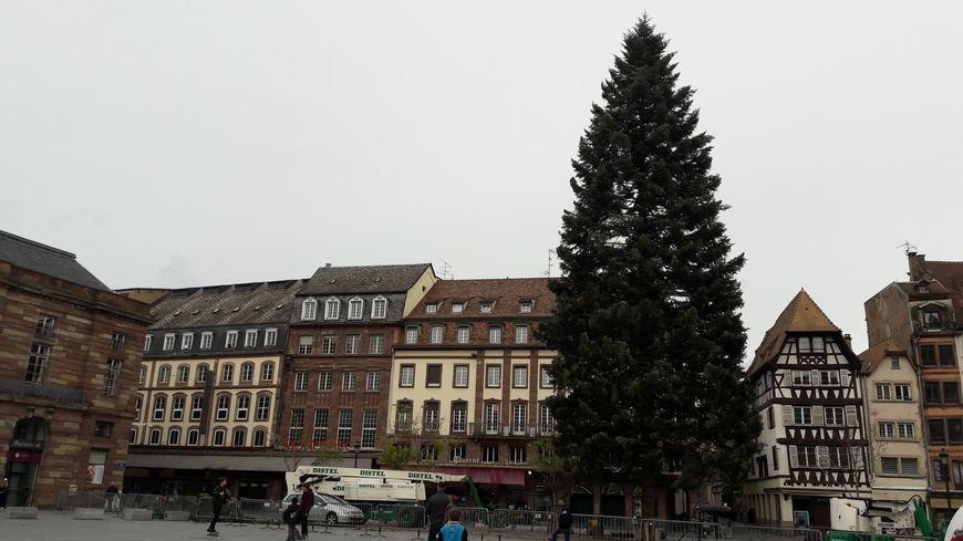 Strasbourg sapin noel casse