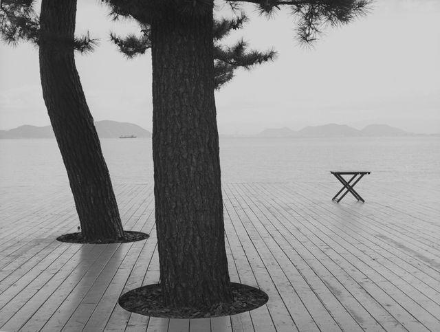 """Série """"L'arrière-saison"""", Naoshima, Japon, 2015."""
