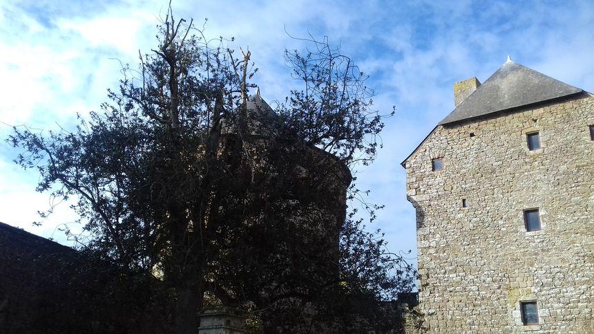 dans la cour du château de Lassay