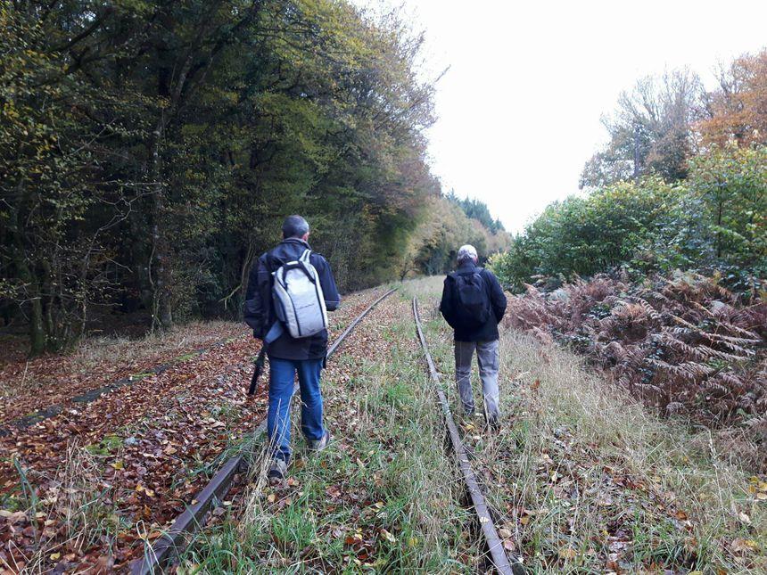 Week-end du 11 novembre dans les Côtes d'Armor, deux membres de l'observatoire anticpe l'installation du loup - Radio France
