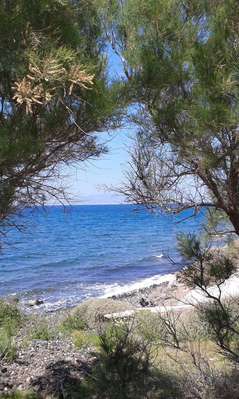 Plage grecque de Santorin