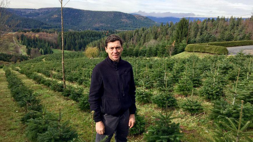 Christian Loew est producteur de sapins dans la vallée de la Bruche