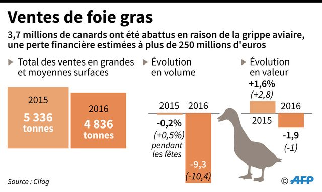 Chute de la production et des ventes de canards