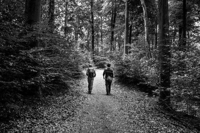 """Le bord de la forêt de Vauclair, qui est toujours officiellement classé """"zone rouge"""", fut planté artificiellement en 1927, pour masquer les traces des combats."""