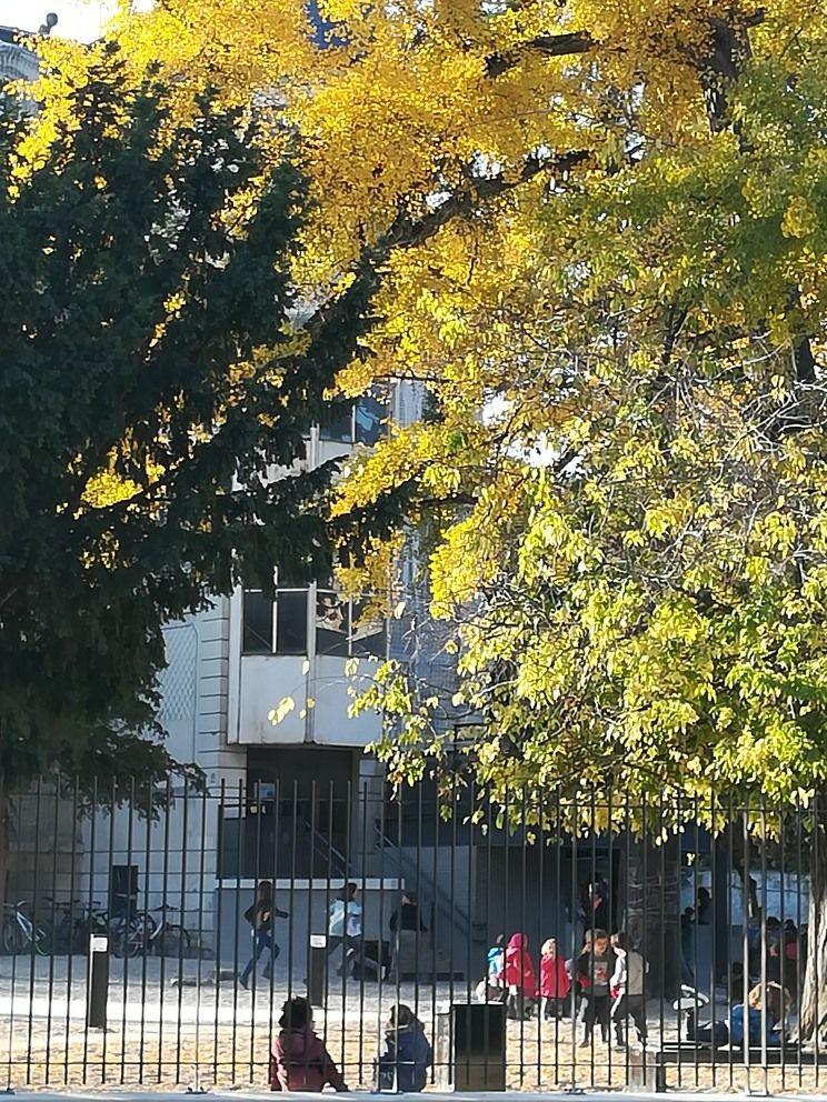 Ecole Decroly, novembre 2017.