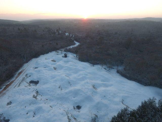 Le sol bouleversé de la forêt de Verdun
