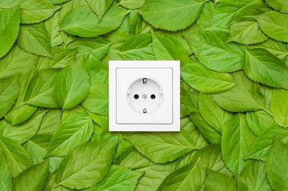Choisir une énergie verte quand on opte pour un nouveau fournisseur