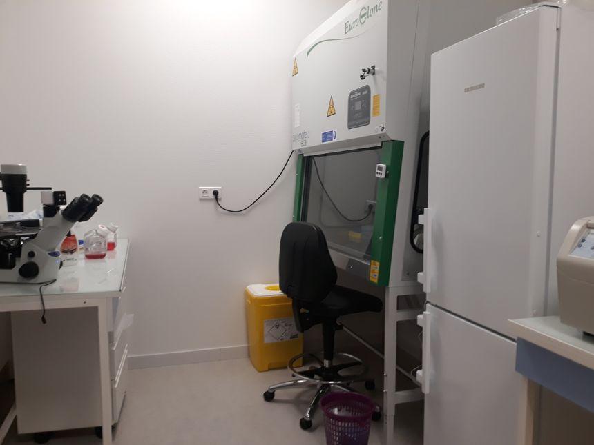 La salle d'incubation du laboratoire Carcidiag à Guéret