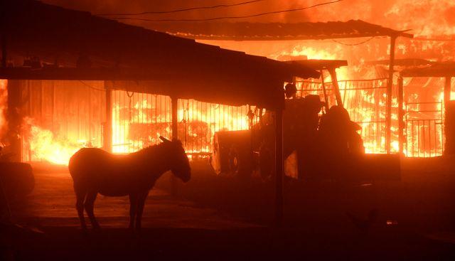 Les flammes font rage à Los Angeles