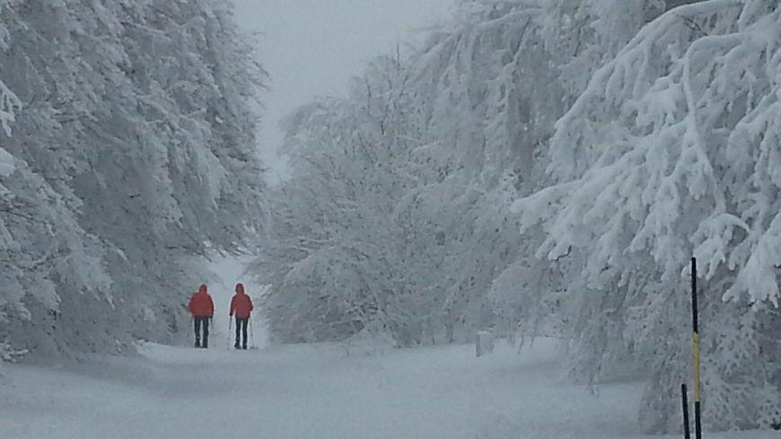 Une neige fraîche abondante sur la route des Crêtes dans les Vosges