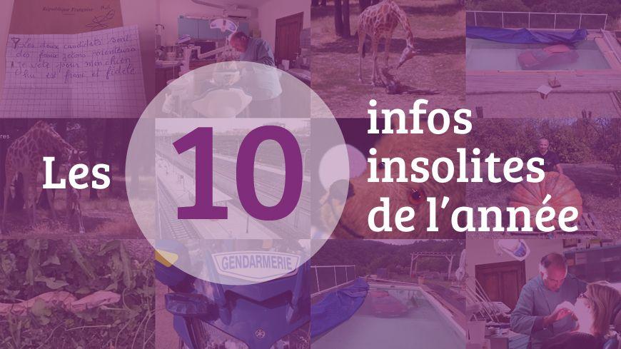 Les dix infos insolites de 2017 en Drôme Ardèche
