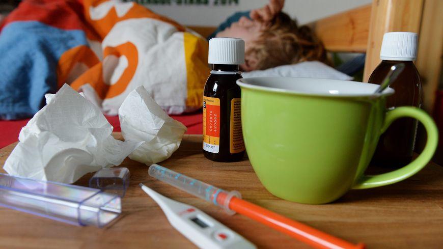 grippe l 39 pid mie s 39 installe dans la loire et la haute loire. Black Bedroom Furniture Sets. Home Design Ideas