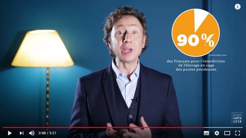 Stéphane Bern dans la dernière vidéo de L214
