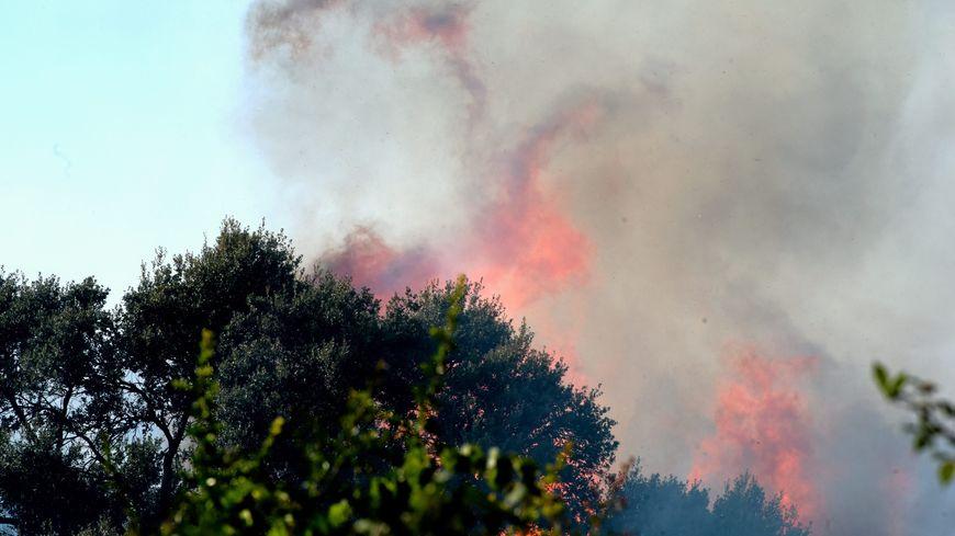 Plusieurs dizaines d'habitants de Grabels avaient été évacués