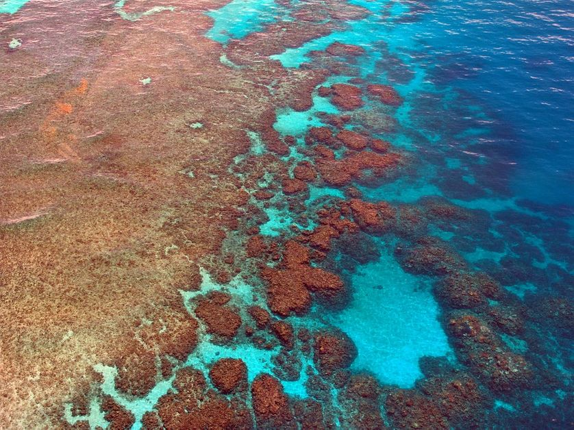La Grande Barrière de Corail, au large de la côte orientale australienne