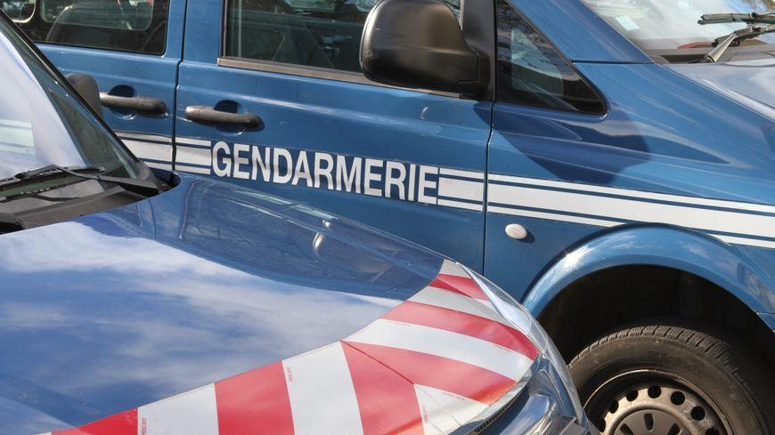 Véhicules de gendarmerie (image d'illustration)