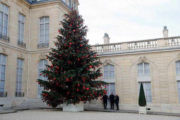 Le sapin de Noël de la cour de l'Elysée, à Paris, en décembre 2016.